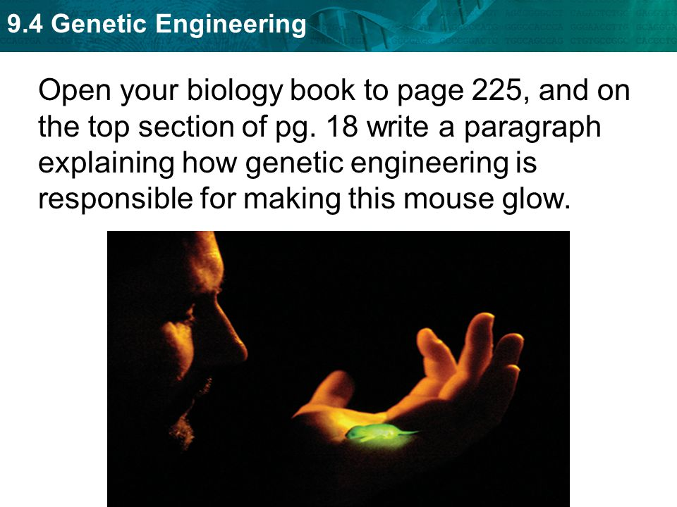 Open your biology book to page 225, and on the top section of pg