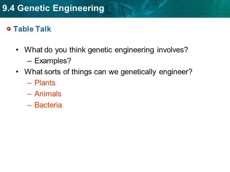 Table Talk What do you think genetic engineering involves Examples What sorts of things can we genetically engineer