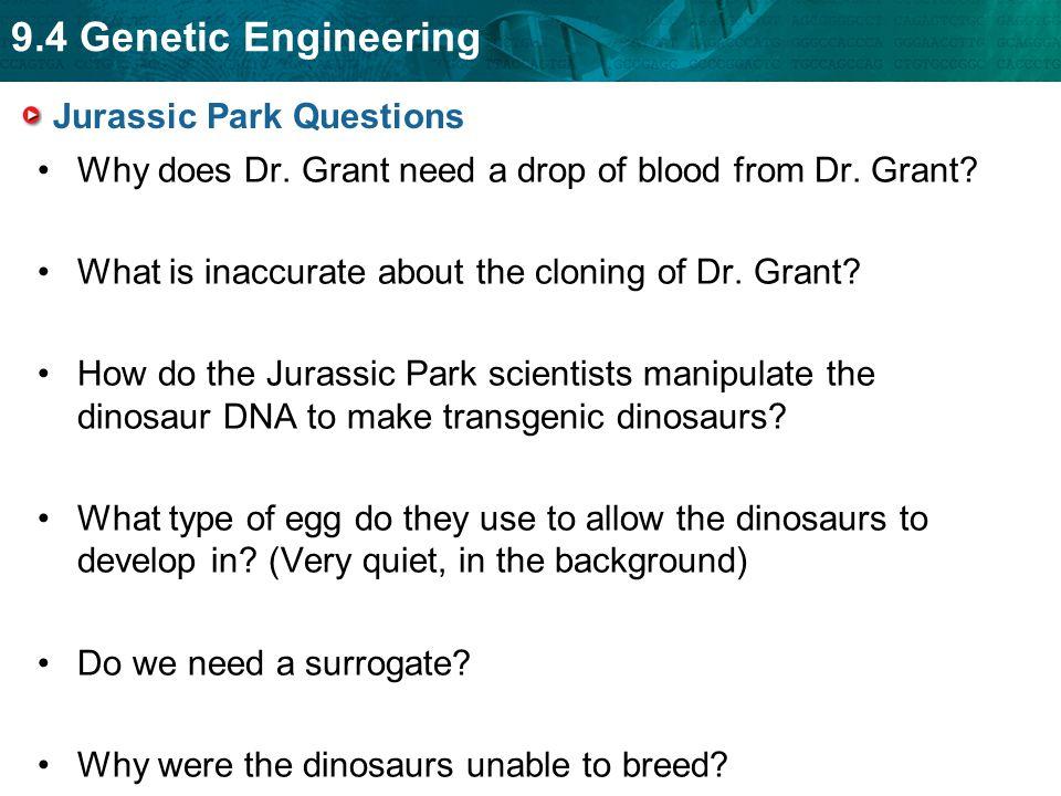 Jurassic Park Questions