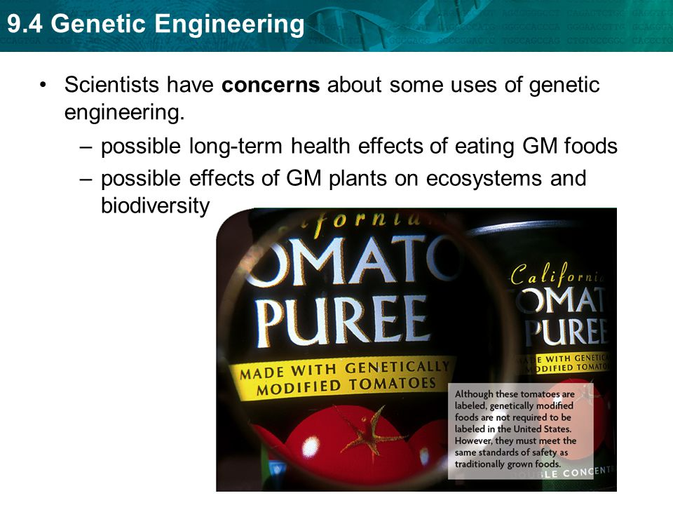 Scientists have concerns about some uses of genetic engineering.