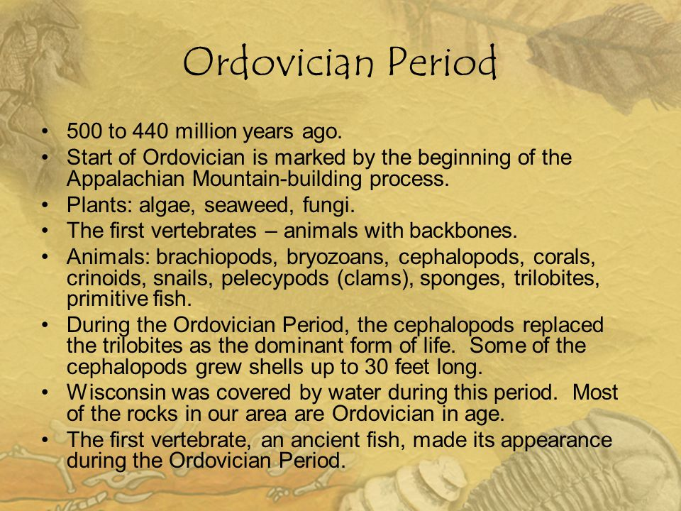 Ordovician Period 500 to 440 million years ago.