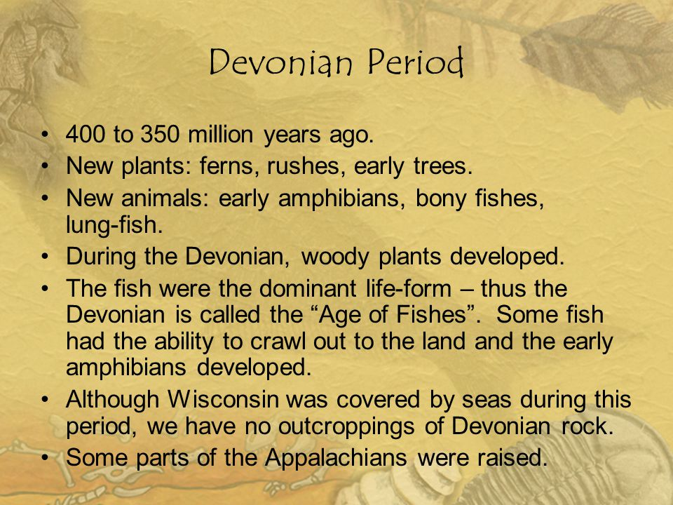 Devonian Period 400 to 350 million years ago.