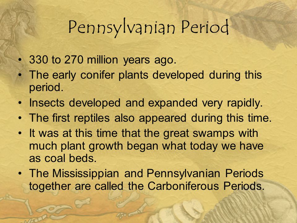 Pennsylvanian Period 330 to 270 million years ago.