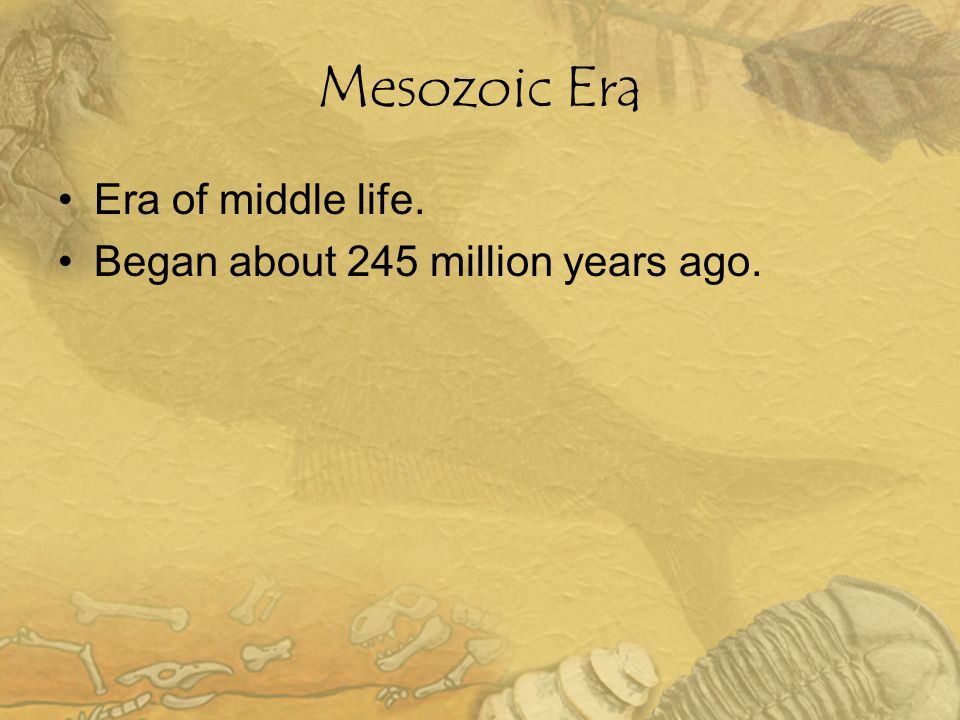 Mesozoic Era Era of middle life. Began about 245 million years ago.