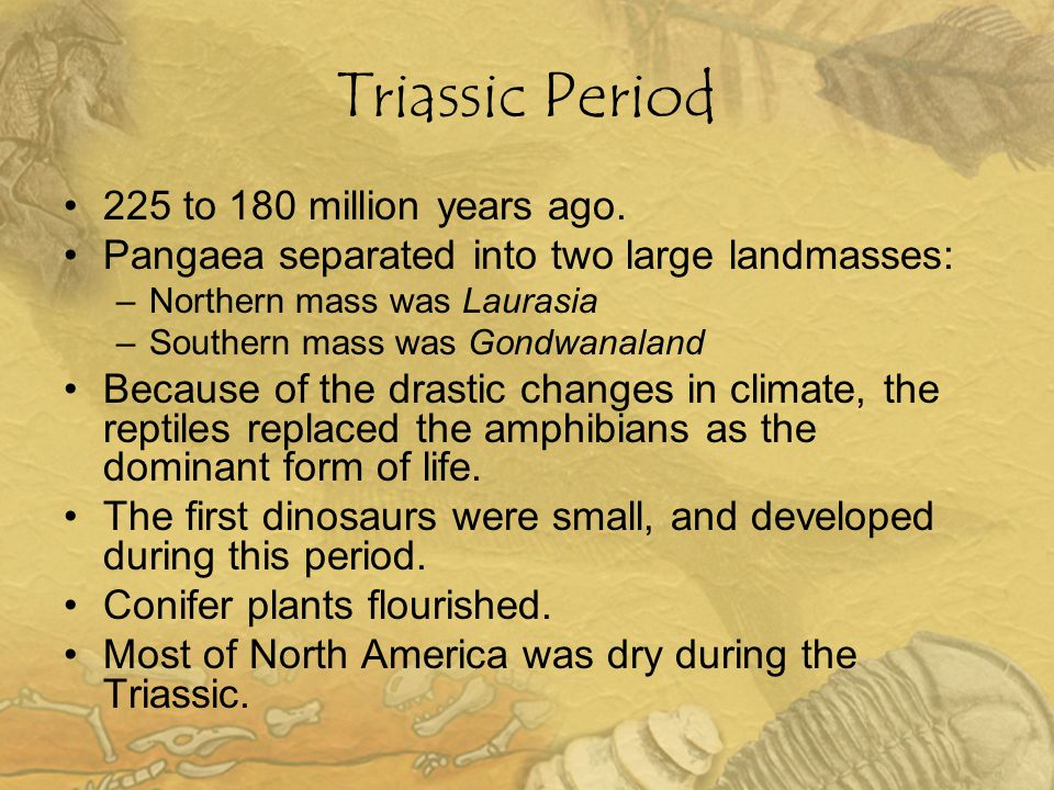 Triassic Period 225 to 180 million years ago.