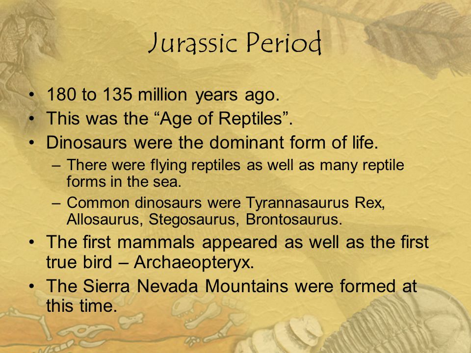 Jurassic Period 180 to 135 million years ago.