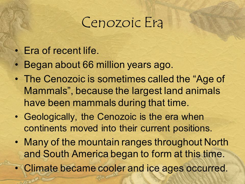 Cenozoic Era Era of recent life. Began about 66 million years ago.