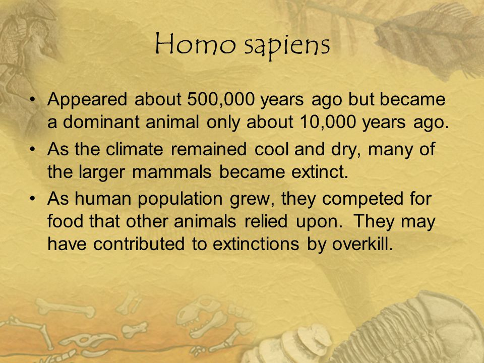 Homo sapiens Appeared about 500,000 years ago but became a dominant animal only about 10,000 years ago.