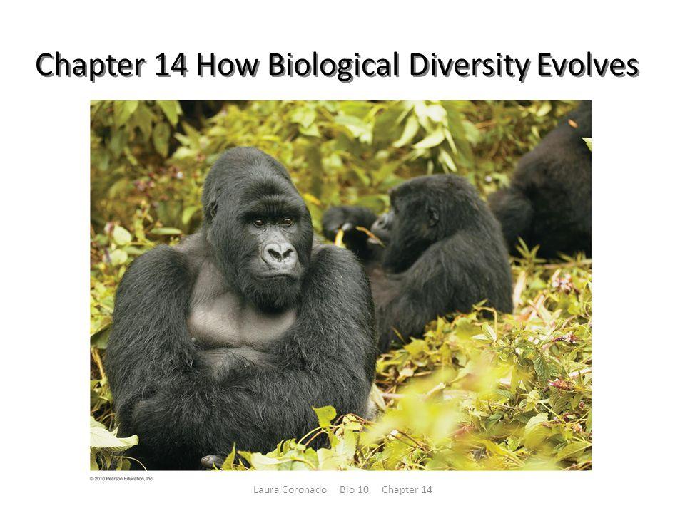 Chapter 14 How Biological Diversity Evolves