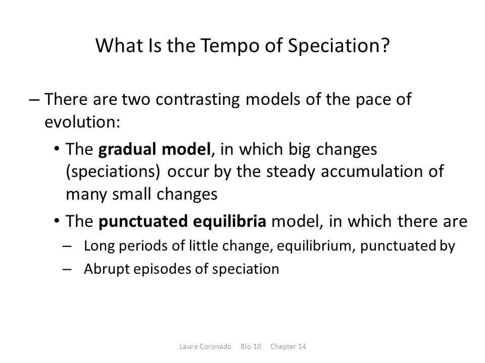 What Is the Tempo of Speciation