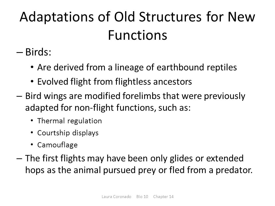 Adaptations of Old Structures for New Functions