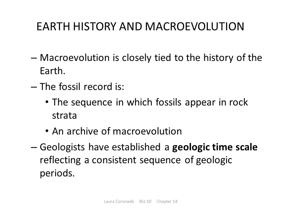 EARTH HISTORY AND MACROEVOLUTION