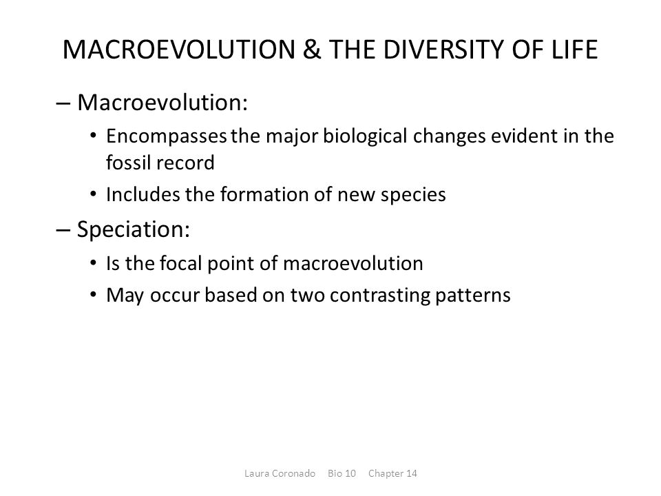MACROEVOLUTION & THE DIVERSITY OF LIFE