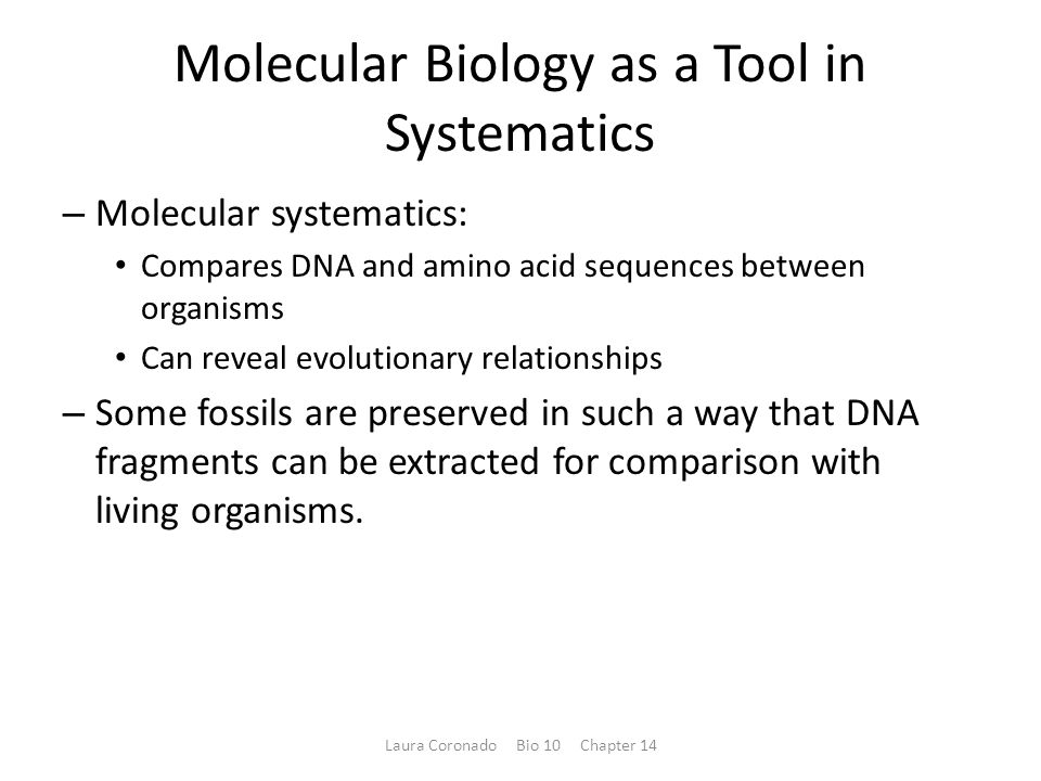 Molecular Biology as a Tool in Systematics