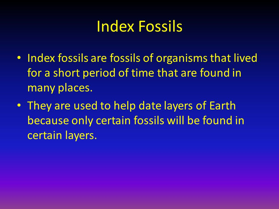 Index Fossils Index fossils are fossils of organisms that lived for a short period of time that are found in many places.