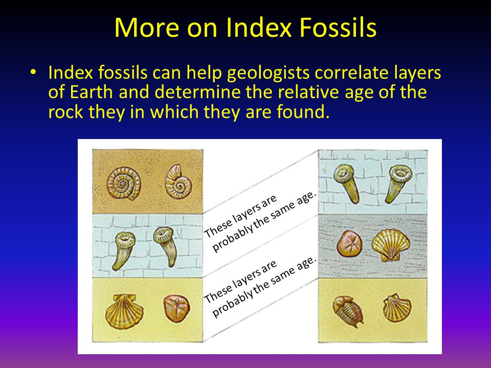 More on Index Fossils