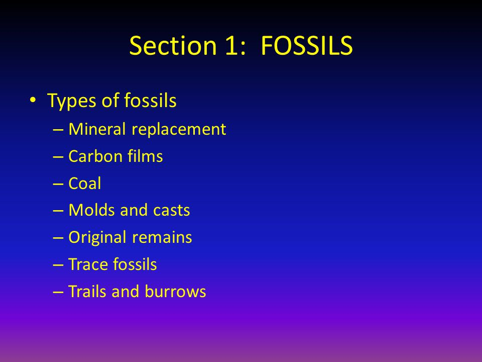 Section 1: FOSSILS Types of fossils Mineral replacement Carbon films