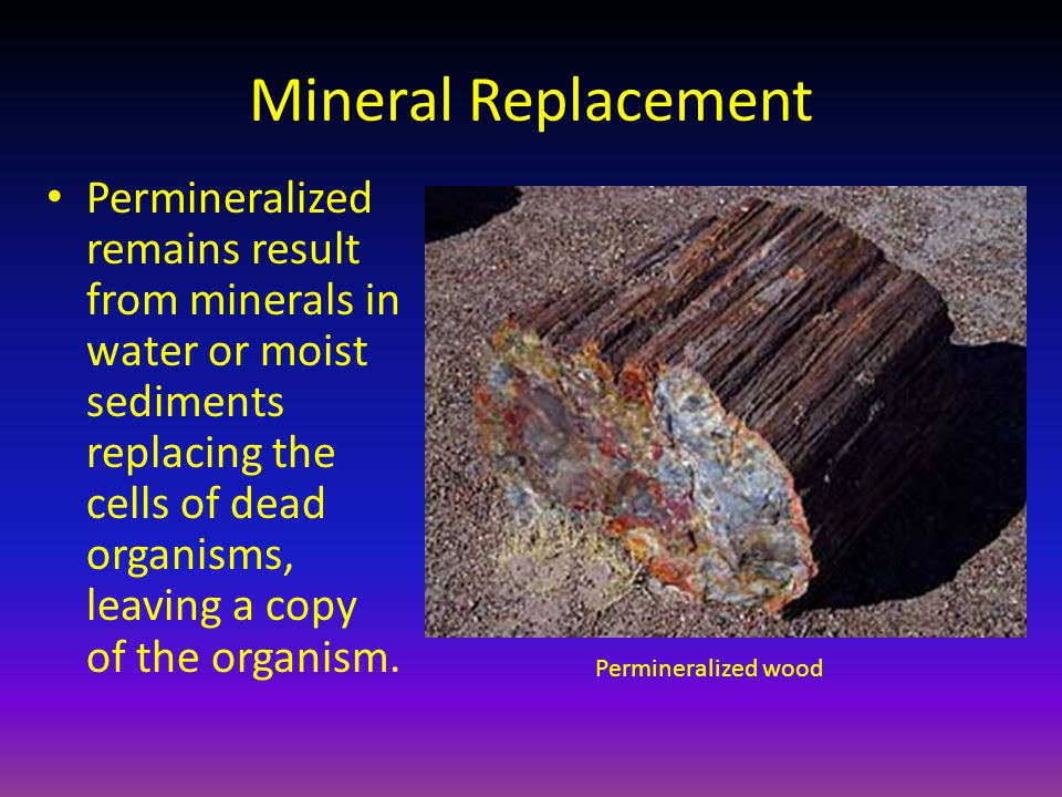 Mineral Replacement