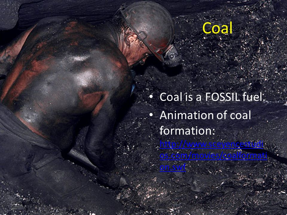 Coal Coal is a FOSSIL fuel.