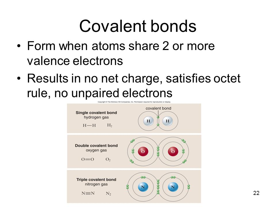 Covalent bonds Form when atoms share 2 or more valence electrons