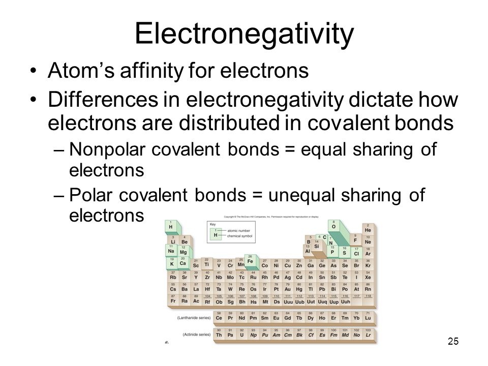 Electronegativity Atom's affinity for electrons