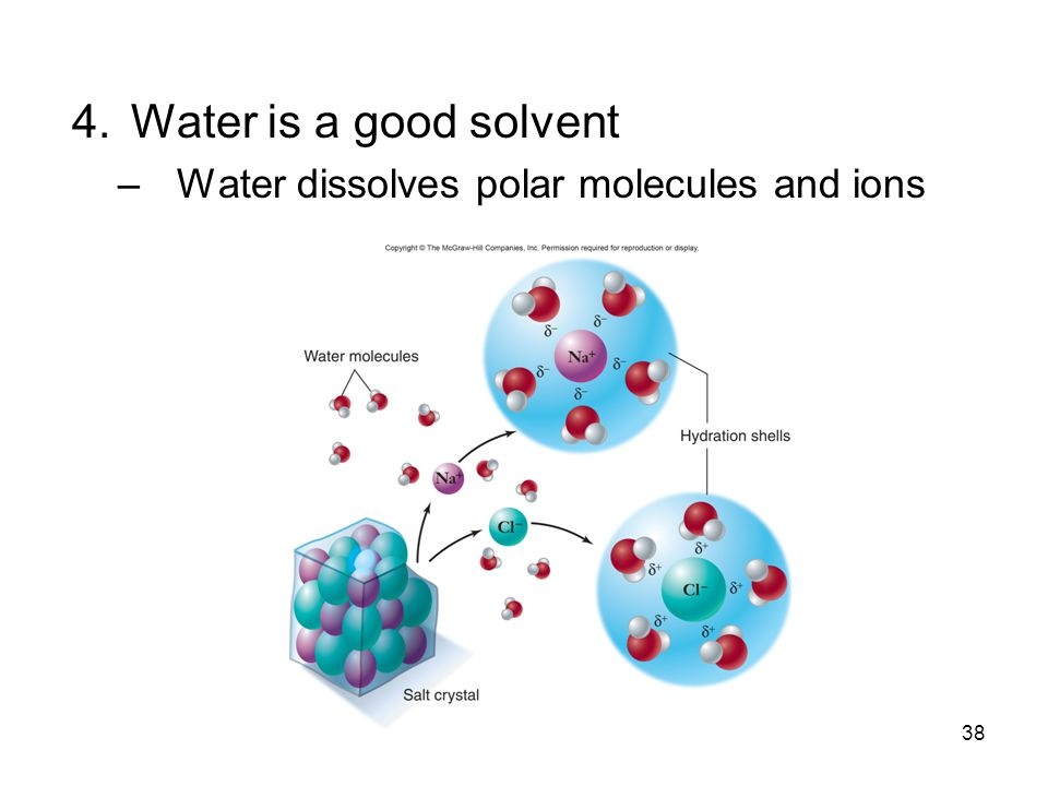 Water is a good solvent Water dissolves polar molecules and ions