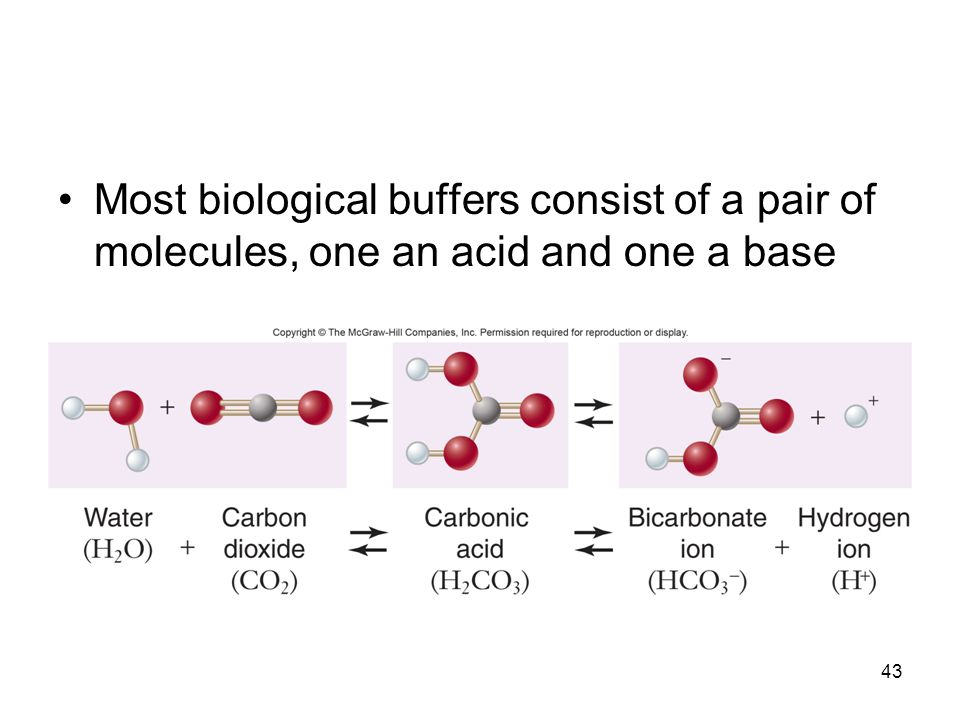 Most biological buffers consist of a pair of molecules, one an acid and one a base