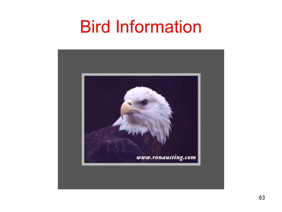 Bird Information