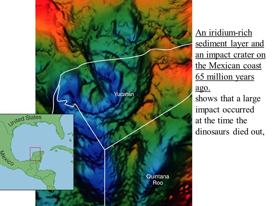 shows that a large impact occurred at the time the dinosaurs died out,