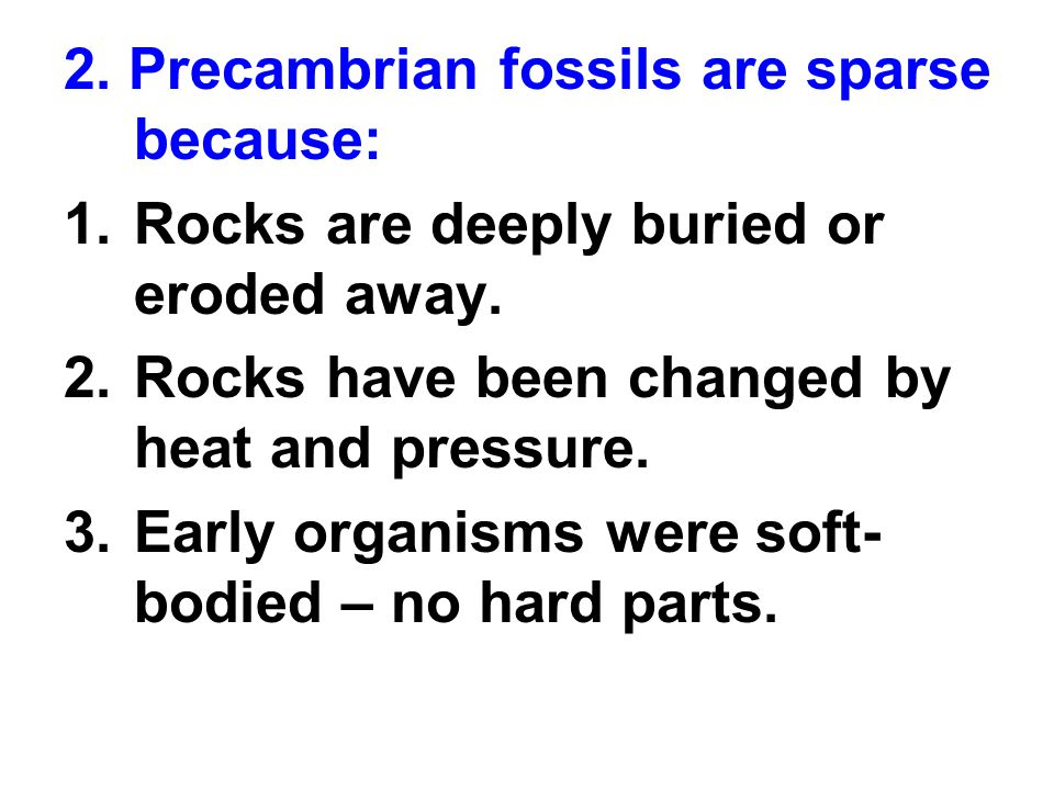2. Precambrian fossils are sparse because:
