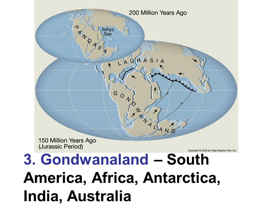 3. Gondwanaland – South America, Africa, Antarctica, India, Australia