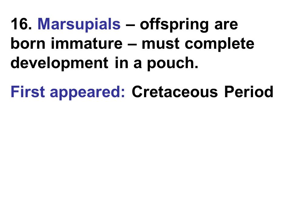 16. Marsupials – offspring are born immature – must complete development in a pouch.