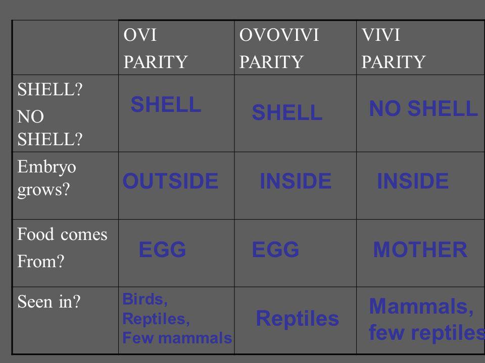 SHELL NO SHELL SHELL OUTSIDE INSIDE INSIDE EGG EGG MOTHER Mammals,