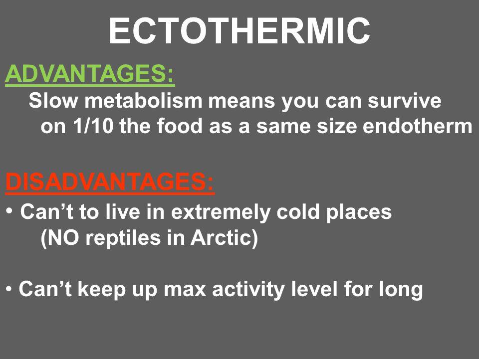 ECTOTHERMIC ADVANTAGES: DISADVANTAGES: