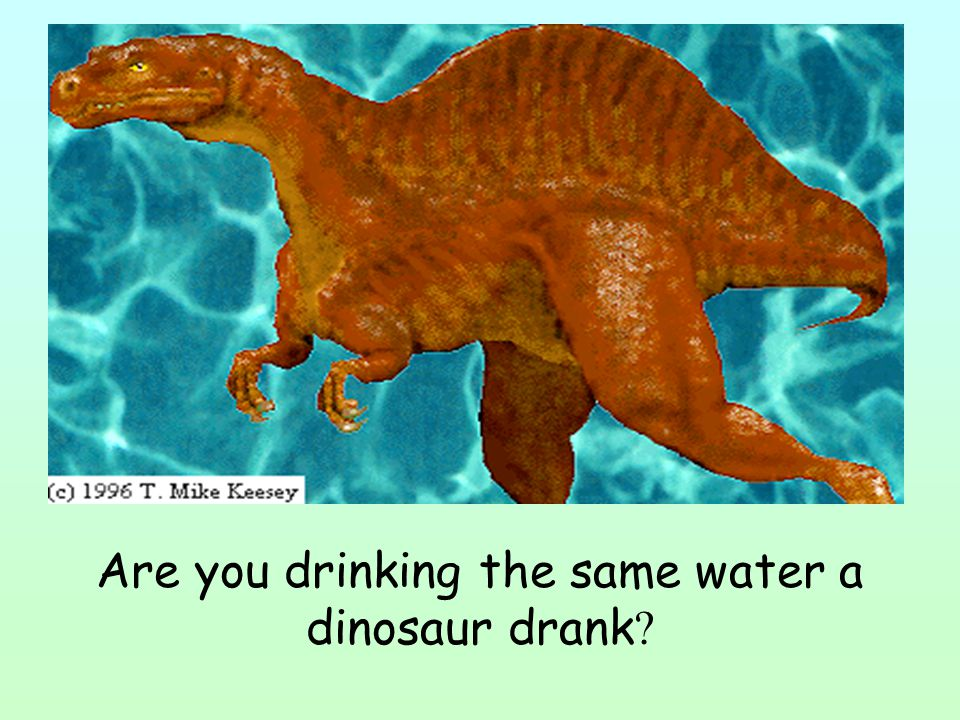 Are you drinking the same water a dinosaur drank