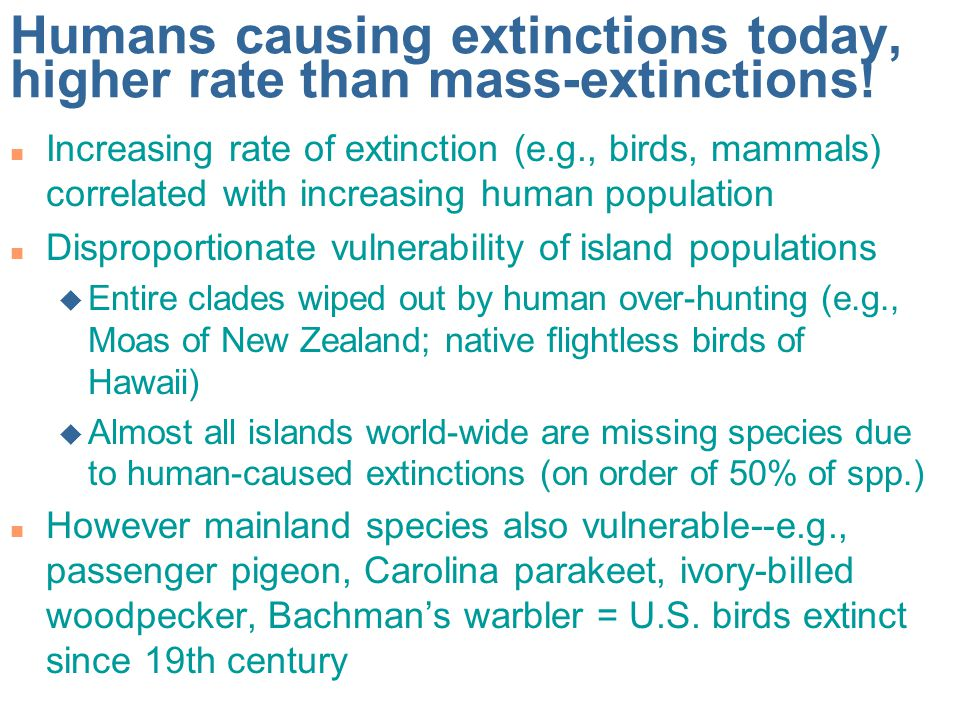 Humans causing extinctions today, higher rate than mass-extinctions!