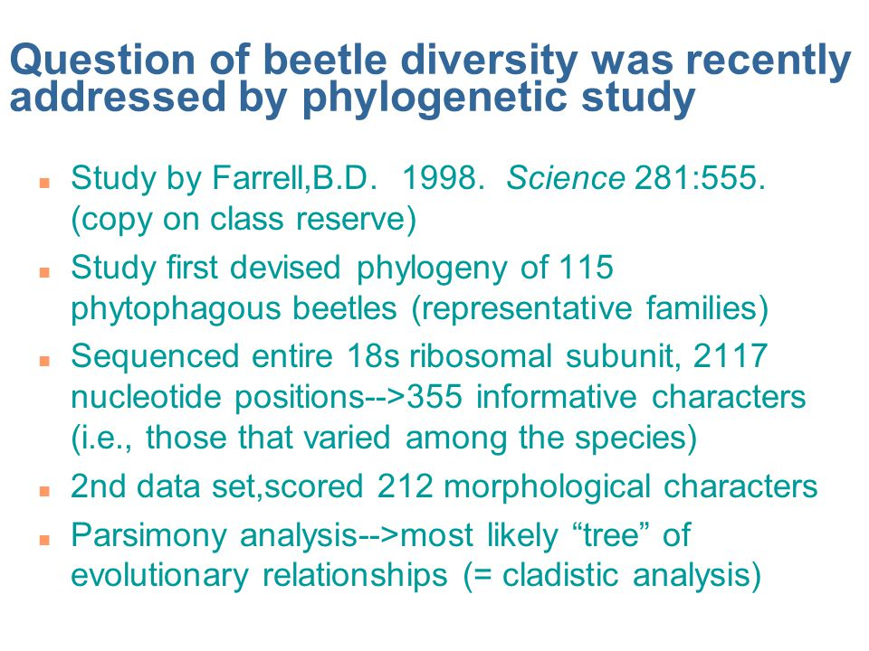 Question of beetle diversity was recently addressed by phylogenetic study