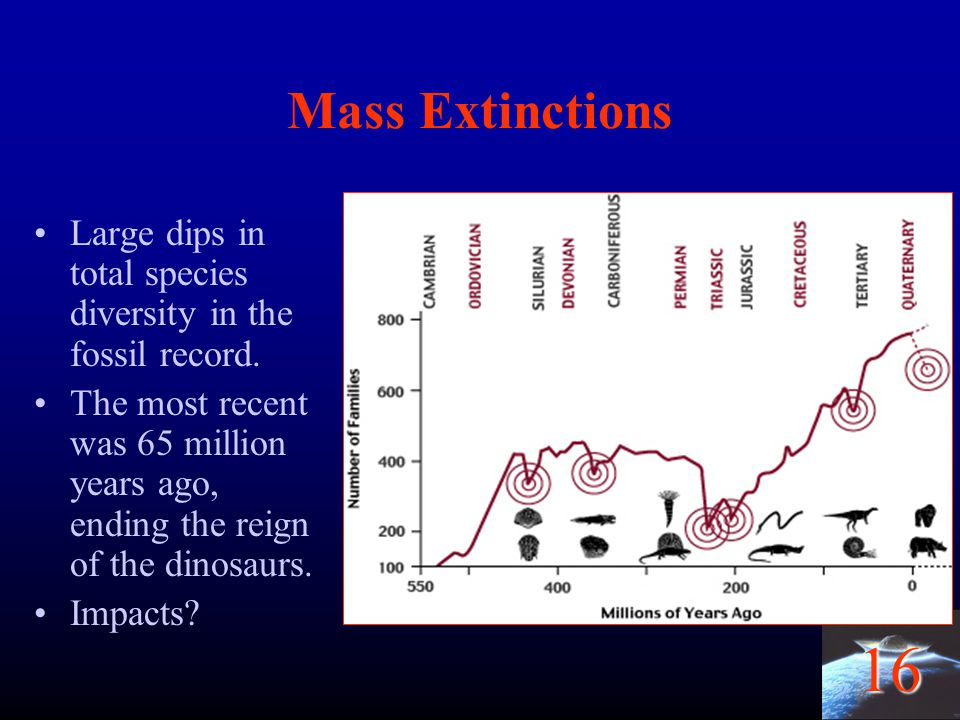 Mass Extinctions Large dips in total species diversity in the fossil record.