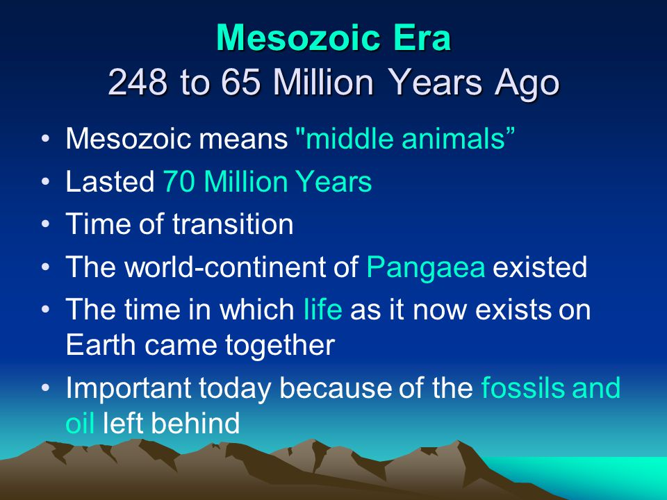 Mesozoic Era 248 to 65 Million Years Ago
