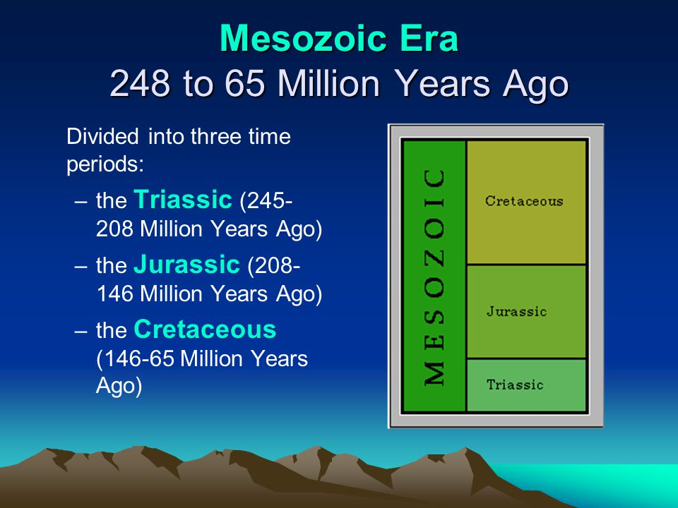 Mesozoic Era 248 to 65 Million Years Ago