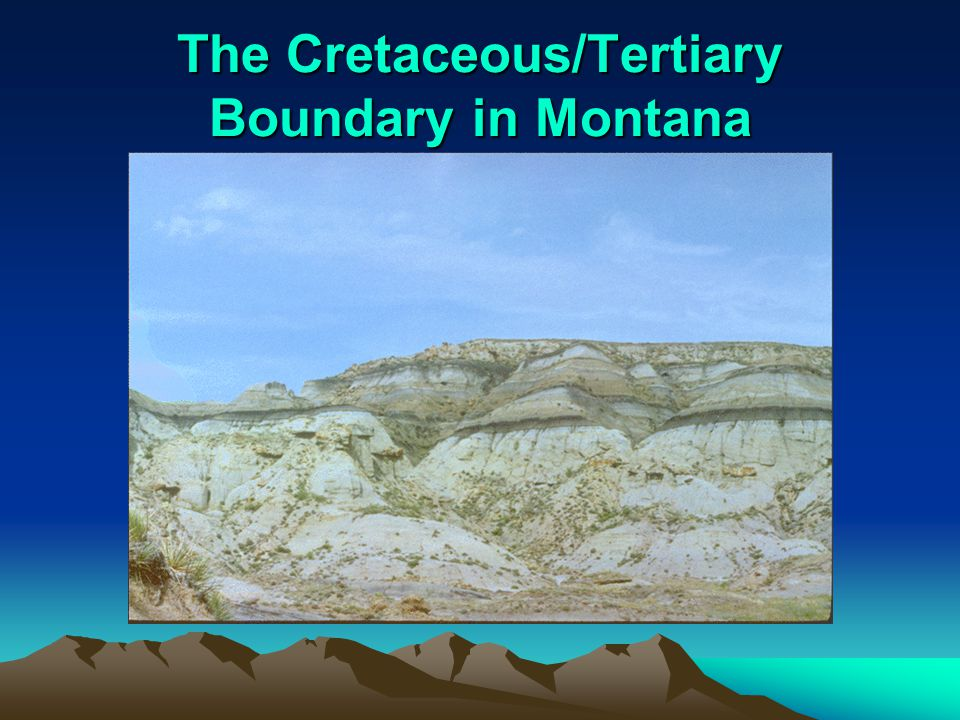 The Cretaceous/Tertiary Boundary in Montana