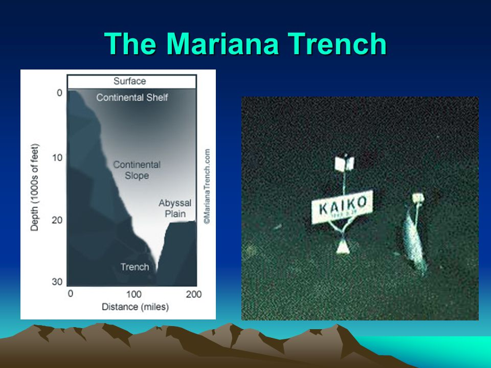 The Mariana Trench Example of a trench in the ocean floor