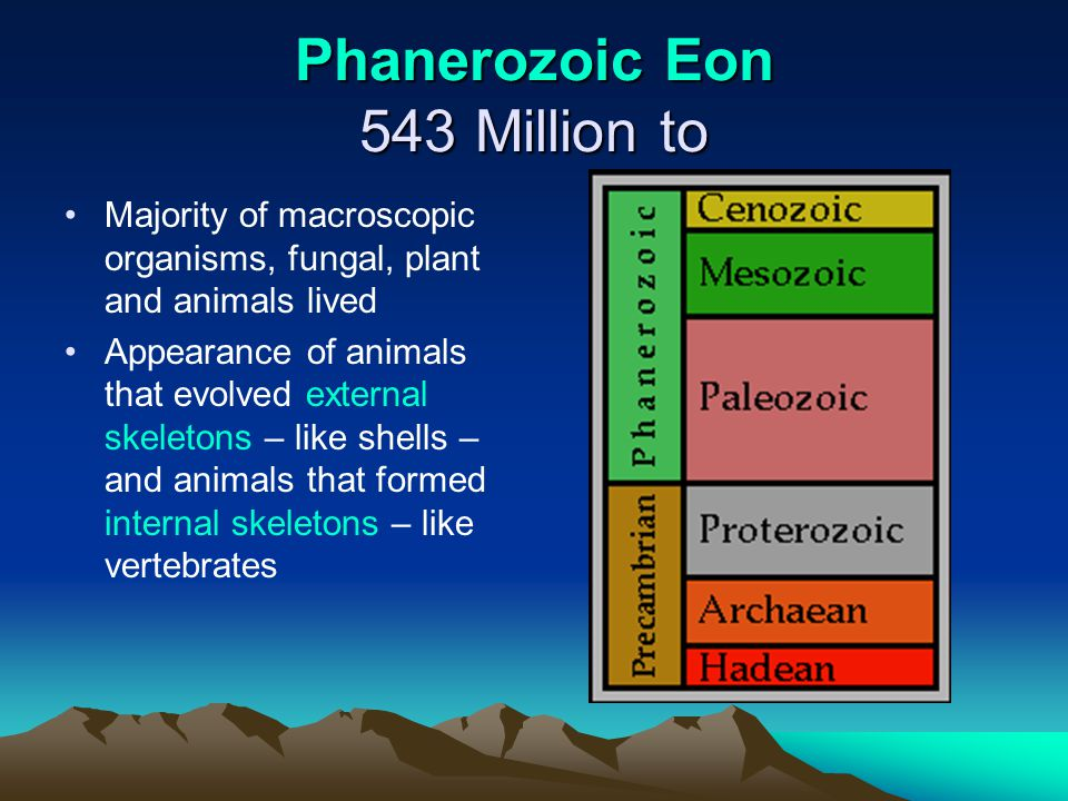 Phanerozoic Eon 543 Million to