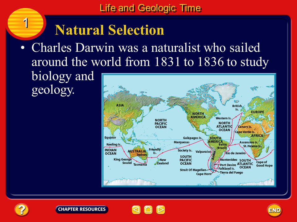 Life and Geologic Time 1. Natural Selection. Charles Darwin was a naturalist who sailed around the world from 1831 to 1836 to study biology and.