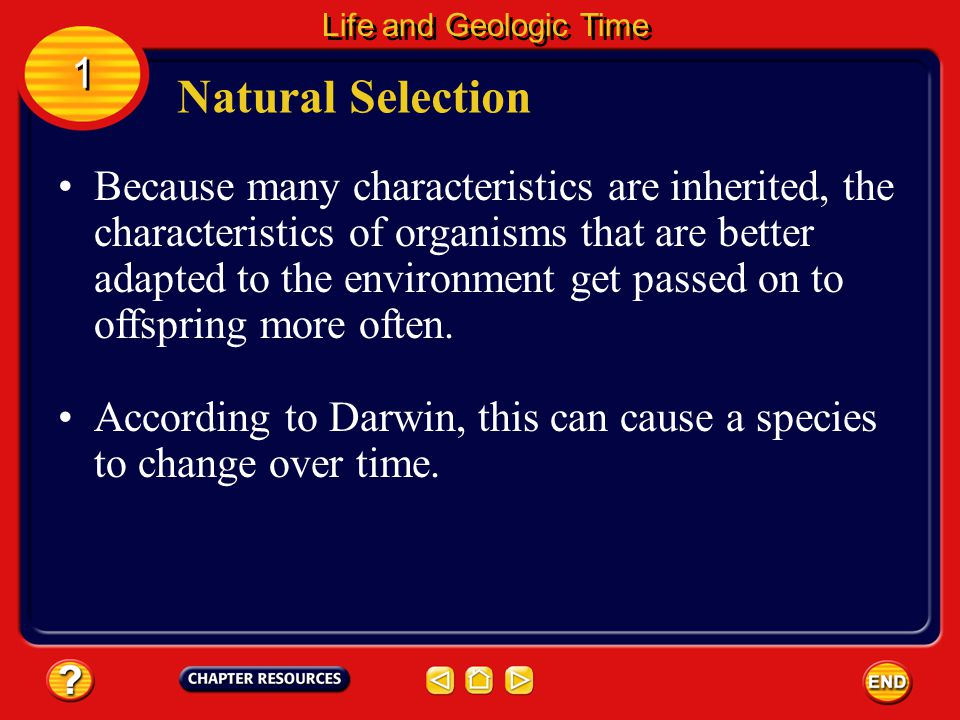 Life and Geologic Time 1. Natural Selection.