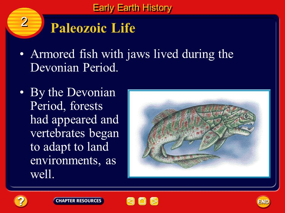 Early Earth History 2. Paleozoic Life. Armored fish with jaws lived during the Devonian Period.