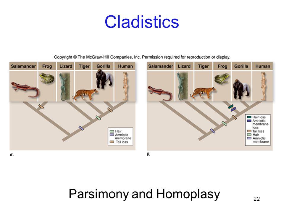 Parsimony and Homoplasy