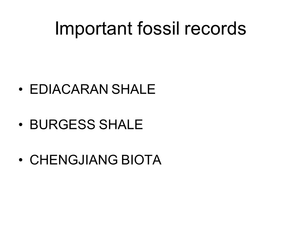 Important fossil records