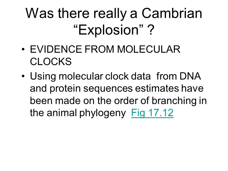 Was there really a Cambrian Explosion