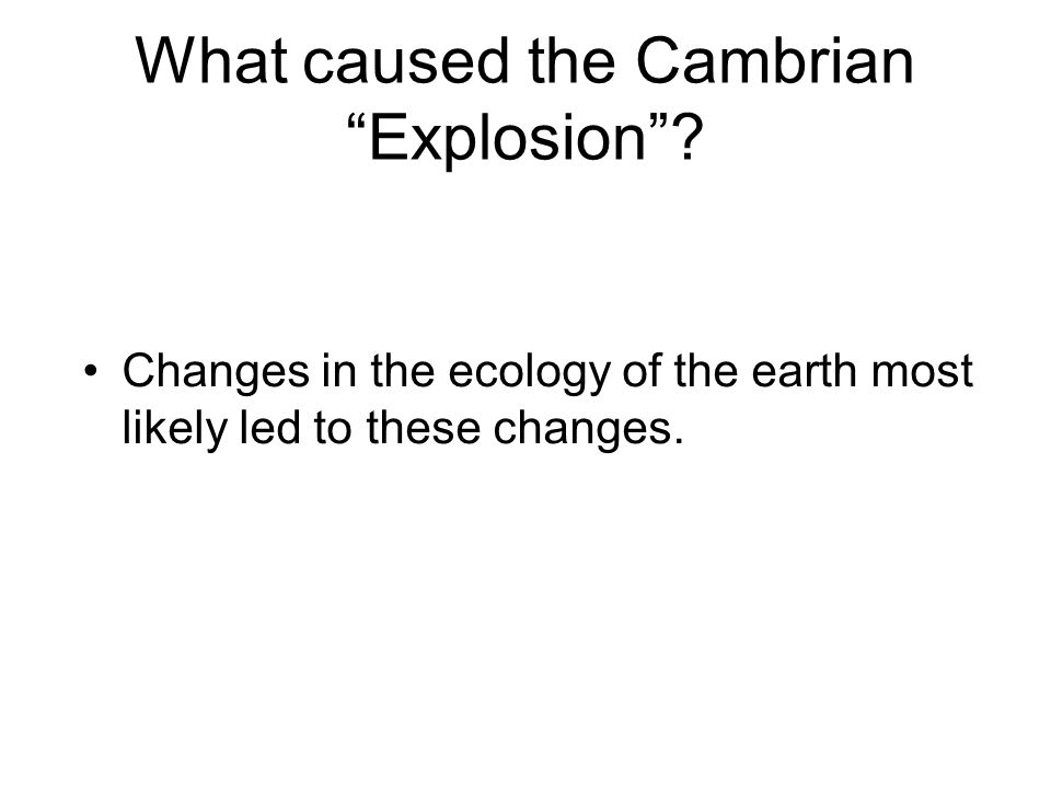 What caused the Cambrian Explosion